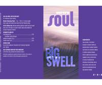 Soul Soul Big Swell 15 Gal ROSSBS15G