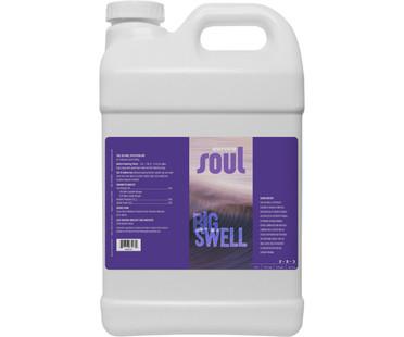 Soul Soul Big Swell 2.5 Gal ROSSBS2.5G