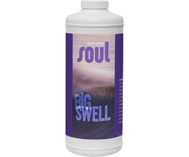 Soul Soul Big Swell Qt ROSSBSQ