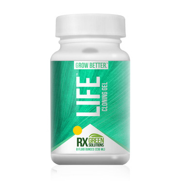 Rx Green Solutions Life Cloning Gel 8oz RXLF3008