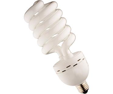 SunBlaster 55W SunBlaster CFL 6400K 6/cs SL0900159