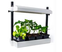 SunBlaster Micro Grow Light Garden White 1/ea SL1600199