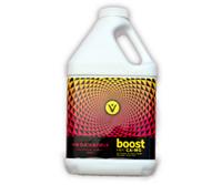 Vegamatrix Boost, 1 gal 4/cs VX40020