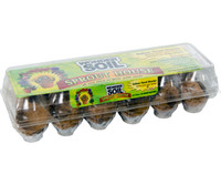 Wonder Soil SPROUT HOUSE Carton with 24 Cups WS20080