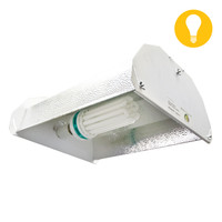 200W CFL Bulb and Reflector Package