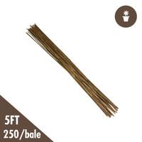 5 Natural Bamboo Stakes Bulk 250/bale