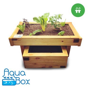 Aqua-Garden - Complete Aquaponics Kit