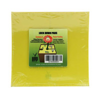 Lock Down Pads 6 8pcs - SQUARE