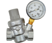 Dosatron Dosatron Pressure Reg with Gauge - 3/4in FPT x FPT DSPRWG34