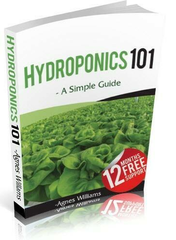 Dealzer Hydroponics 101 Training E-Book 55 Page and 12 Months Tech Support