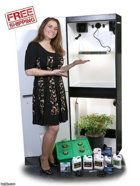 Dealzer Growzilla 5.0 - 4 Plant LED Hydroponics Grow Box