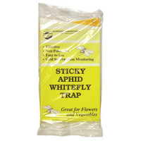 Sticky Aphid Whitefly Trap 5/Pack Cs