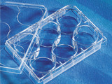 Costar® 6-well Clear TC-treated Multiple Well Plates, Bulk Packed, Sterile/Case of 100