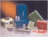 Immunodot® Immunoassay Test System For Borrelia/Lyme