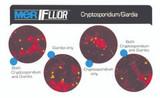 Merifluor™Cryptosporidium/Giardia