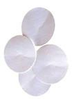 Solvent Filter, Nylon, 47 mm, 0.45 um, Aqueous, 100/pkg;