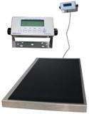 Health O Meter Professional Large Platform Scale