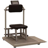 Health O Meter Professional Wheelchair Scales