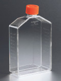 Corning® 175cm² Angled Neck Cell Culture Flask with Vent Cap/Case of 50