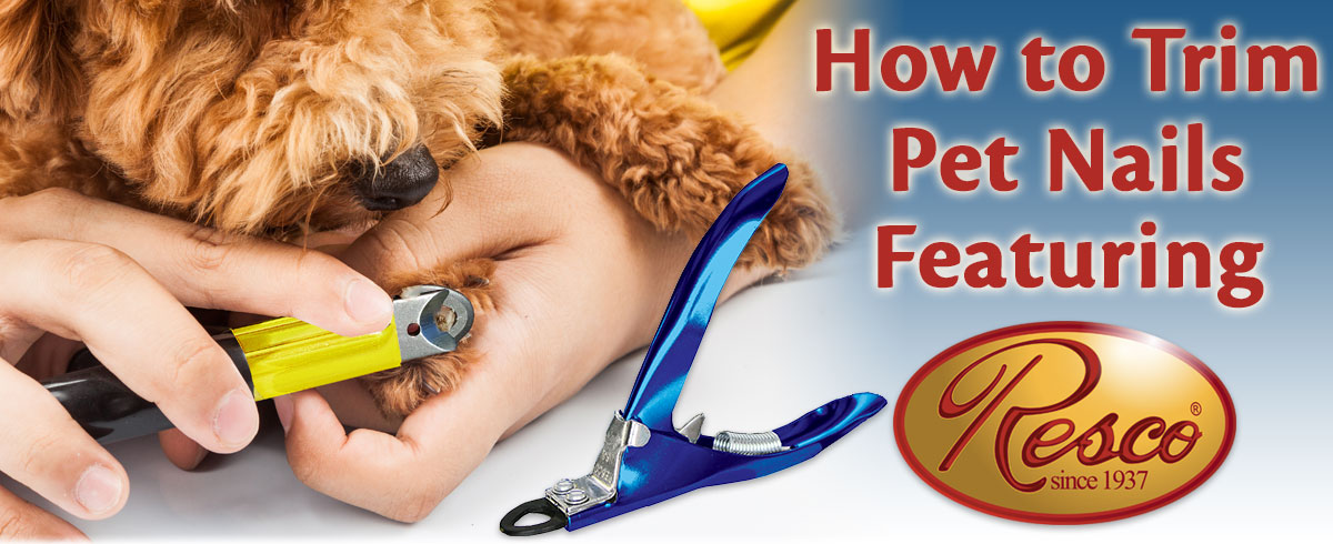 How to Trim Pet Nails Featuring Resco