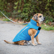 RC Pet Shasta Coat