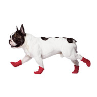 Canada Pooch Wellies Boots in Red