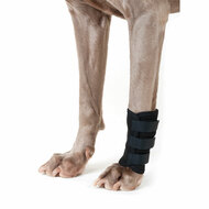 Back on Track Therapeutic Dog Leg Wrap