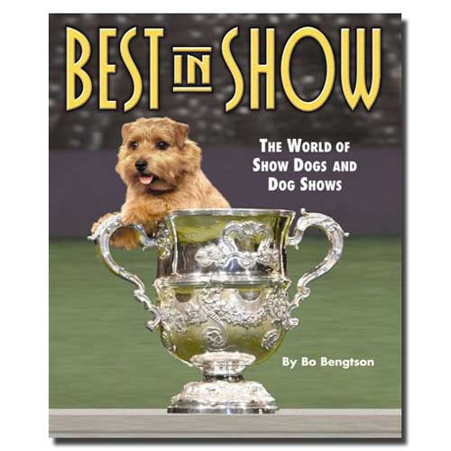 SDISC Best In Show by Bo Bengtson