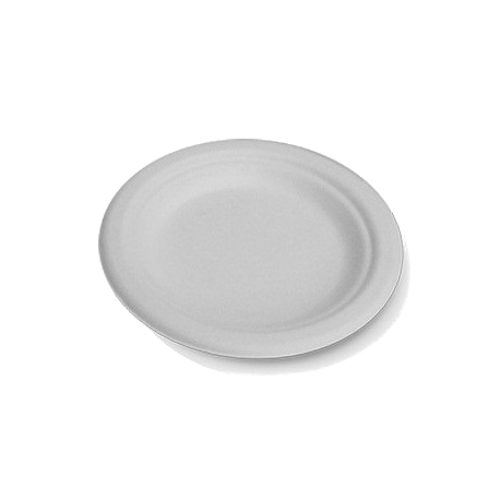 "180mm/7"" White Sugarcane Plates (small)"