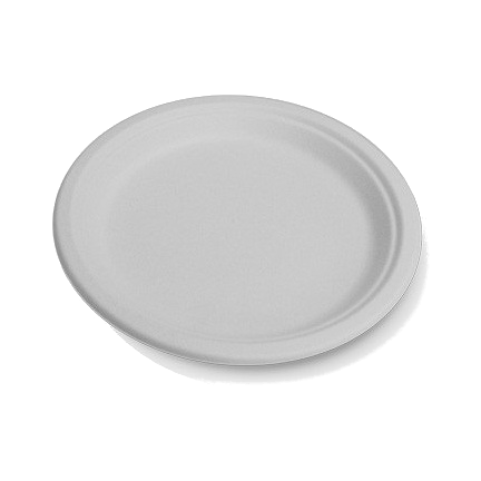 225mm White Sugarcane Round Plates (large)
