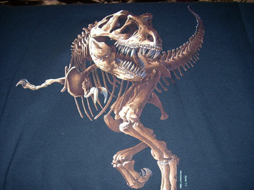 Children's T Rex Skeleton Large