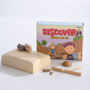 Discover Fossils Dig Kit
