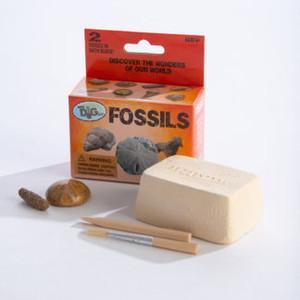 Fossils Mini Dig Kit