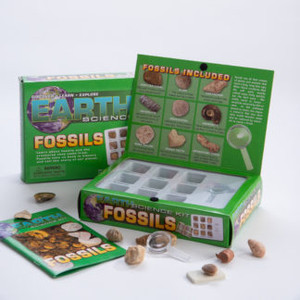 Earth Science  Kit Fossils