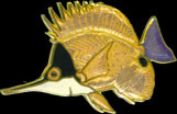 Butterfly Fish Pin