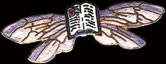 Book Wings Pin