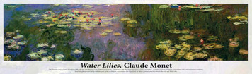 Buffalo Games Monet Water Lilies 750 pc Puzzle