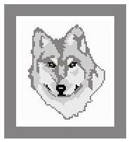 """Winter Wolf Crochet Afghan Graph Pattern.  All done in single crochet, changing colors as you go along.  Drop one color, pull in the next.  Medium ability.  Size works up to be approx. 40 x 60"""".  Graph is 64 stitches wide by 104 stitches high.  Then you crochet 22 rows (or more) around the outside edge including a border.  Complete instructions are included, a full size graph, and a Helpful Hints page. YOUR ORDER CONFIRMATION WILL BE EMAILED TO YOU WITH CLICKABLE DOWNLOADS FOR PATTERN."""