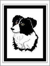 "Border Collie #1 Crochet Afghan Graph Pattern.  All done in single crochet, changing colors as you go along.  Drop one color, pull in the next.  Medium ability.  Size works up to be approx. 50 x 70"".  Graph is 80 stitches wide by 120 stitches high.  Then you crochet 22 rows (or more) around the outside edge including a border.  Complete instructions are included, a full size graph, and a Helpful Hints page."