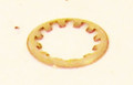 PENTAIR   RETAINING RING, CLAMP   24850-0016