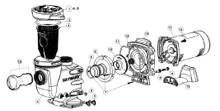 HAYWARD   1/2 HP MOTOR   5230A