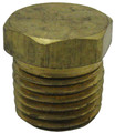 "PENTAIR | PIPE PLUG, 1/4"" - BRASS 