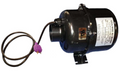 Edit a Product - BLOWER: 1.5HP 240V WITH MJJ PLUG 4' CORD ULTRA 9000 SERIES Return to Search | 3915231