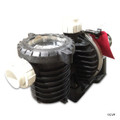 Pentair | MAX-E-PRO PUMP 2HP FR EE 230V | P6E6G-208L (P6E6G-208L)