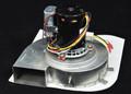 PENTAIR | BLOWER W/GASKET | 400 STD | Blower Gasket MiniMax NT STD 400 Pool Spa Heater | 472374