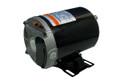 Nidec | PUMP MOTOR: 3/4 HP 115V 2-SPEED 48 FRAME THRUBOLT |  AGL75FL2