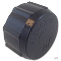 Waterway Plastics | Drain Cap with Gasket Assembly | 550-0240