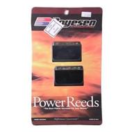 NIB Reed Valve KIT Boyesen BT33P Intake Manifold for Nissan-Tohatsu 70HP Outboar