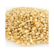 50Lb Baby White Popcorn