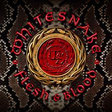 Whitesnake - Flesh & Blood (CD / DVD)